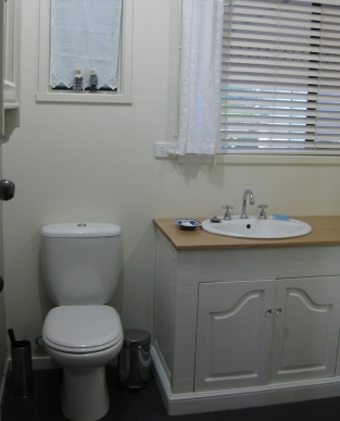 Toilet and basin after renovation
